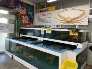 蒲郡魚市場 たかあしがに